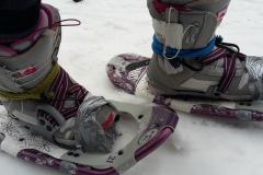 Bulharský tuning amerických sněžnic